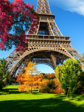 trees-in-park-of-paris-in-autumn-28W9Y6E.png